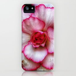 Double Impatiens or begonias iPhone Case