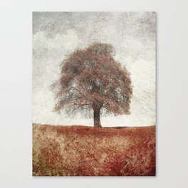 sorbus in autumn Canvas Print