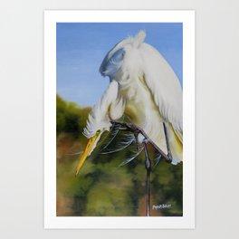 Great Egret In Fall Art Print
