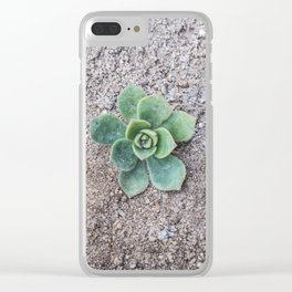 Tiny Succulent Clear iPhone Case