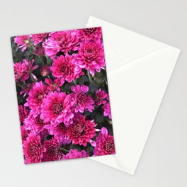 Flowers at Linvilla Stationery Cards