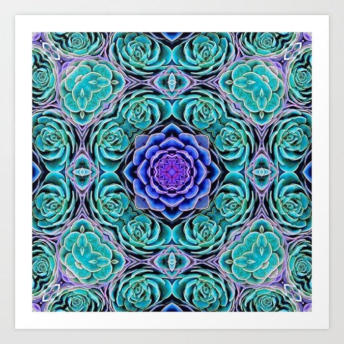 Echeveria Bliss Art Print