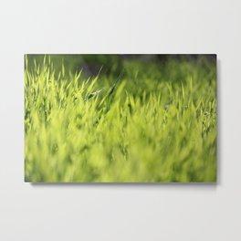 Green Dreams Metal Print