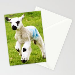 Spring Lamb Stationery Cards