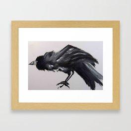 A Crow Framed Art Print
