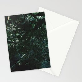 Lair  Stationery Cards