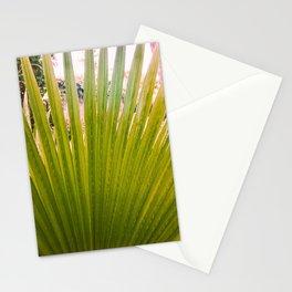 Vintage Fan Palm Stationery Cards