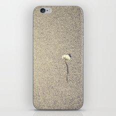 Wide Dandelion iPhone & iPod Skin