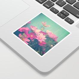 Pink Cosmos Sticker