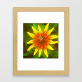 Daisy Girl Framed Art Print