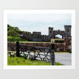Castle & Sheep Art Print
