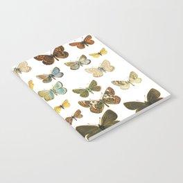 butterflys Notebook