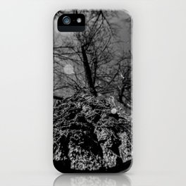 Tree Through A Fisheye Lens in Black and White iPhone Case