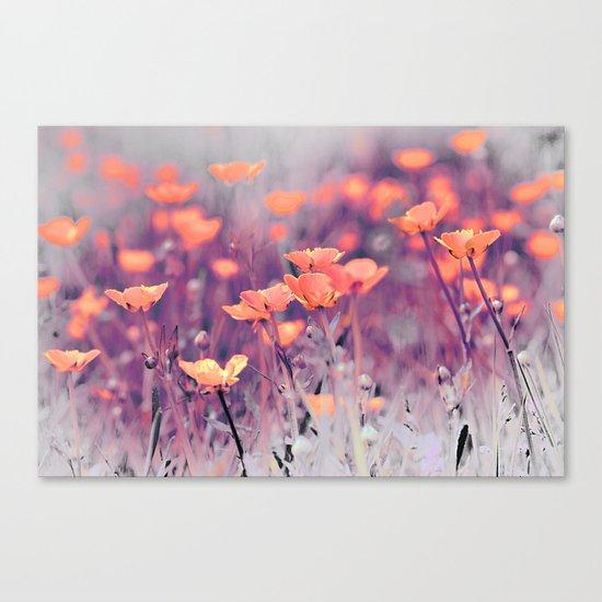 Summer Meadow. Canvas Print