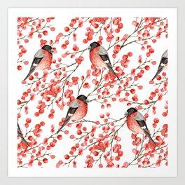 Bullfinch and red berries Art Print