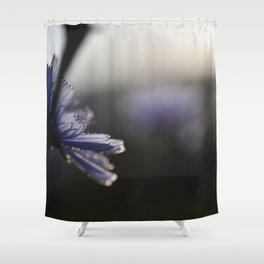 Chicory Shower Curtain