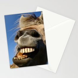 Happy Horse Photography Print Stationery Cards