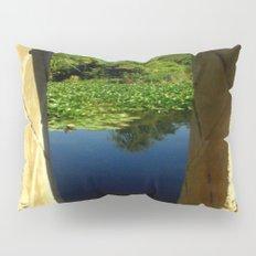 Framing a Pond Pillow Sham
