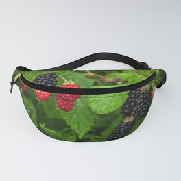 Wild Berries Fanny Pack