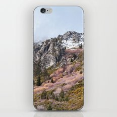 Mountain Landscape iPhone & iPod Skin