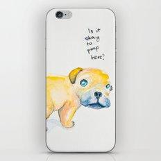 Pug Love iPhone & iPod Skin