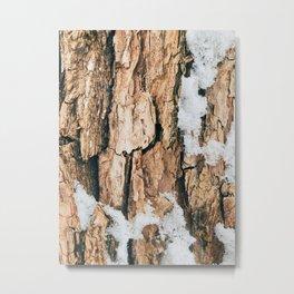 Winter Tree Bark Metal Print