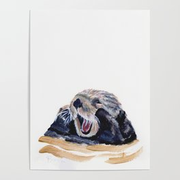 Onawa the Otter Poster