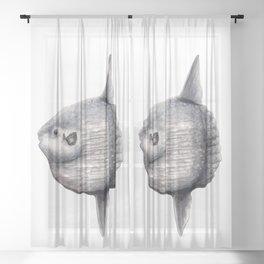 Ocean Sunfish (Mola mola) Sheer Curtain