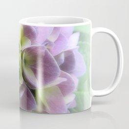 Blue Hydrangea Flower A422 Coffee Mug