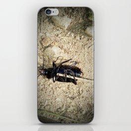 Death Beetle iPhone Skin