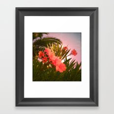 FLOWER N33 Framed Art Print
