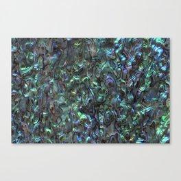 Abalone Shell | Paua Shell | Natural Canvas Print