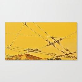 Malla Canvas Print