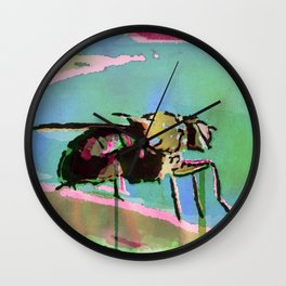 The Contemplation Of A Fly Wall Clock