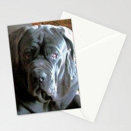 My dog Ovelix! Stationery Cards