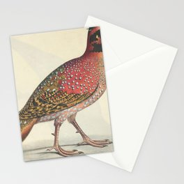Pennants Horned Pheasant satyra pennantii2 Stationery Cards