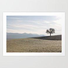 Lonesome tree Art Print
