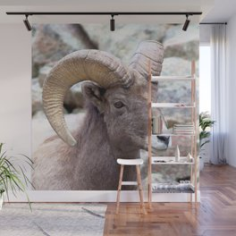 Watercolor Sheep, Bighorn Ram 01, Drake, Colorado, Rocky-top Wall Mural