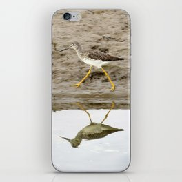Bird on a Mission iPhone Skin