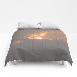 Sunfire   Comforters