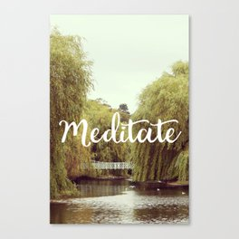 Meditate in the park Canvas Print