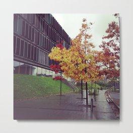 Autumn in Denmark Metal Print