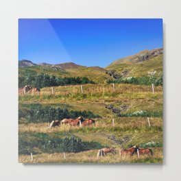 Nuzzling Icelandic Horses on the Snæfellsnes Peninsula Metal Print