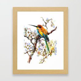Bee Eater and Apricot Blossom Framed Art Print
