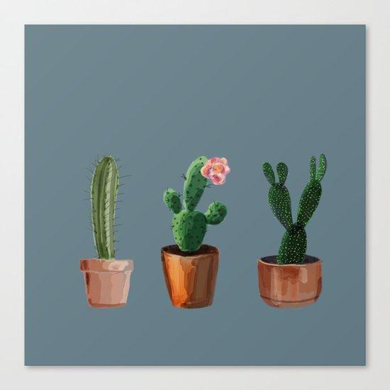 Three Cacti On Blue Background Canvas Print