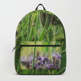 phacelia in a barley field Backpack