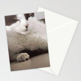 Margo - closeup Stationery Cards