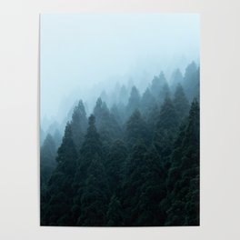 Japanese Forest Poster