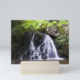 Fairy Glen, Rosemarkie, Scotland Mini Art Print