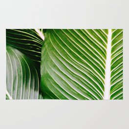 Big Leaves - Tropical Nature Photography Rug